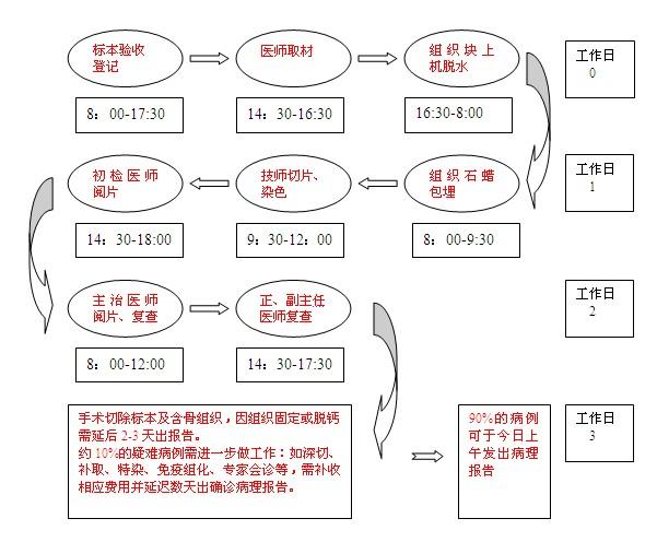 工作流程2.jpg